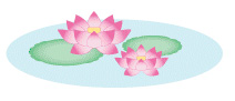 糸島の葬儀場「まごころ葬儀羅漢」蓮の花